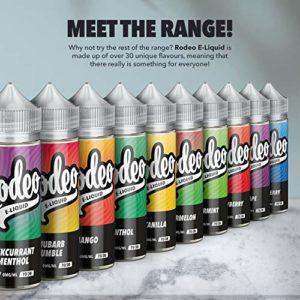 100ml Pêche E-liquide, 70/30, Vape Juice E-liquide Sub Ohm Vape Liquid Flavoured eJuice E Cigarette Liquid, Sans nicotine,120ml bouteille, Short Fill Ecig (Rodeo E Liquid)