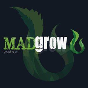 Madrow Growing Art – Chicha, base en verre, 25cm, 1 tuyau en acrylique, avec un lot de 10 pastilles de charbon et 10 embouts. violet