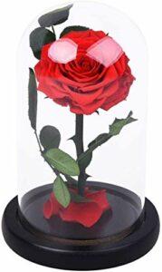 Fleur Rose Conservé main fraîche Fleur Rose avec des pétales tombés en dôme en verre sur la base en bois boîte-cadeau for la fête des Mères Noël anniversaire Saint Valentin (Color : Red)