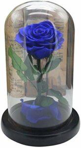 Petite amie cadeau d'anniversaire Immortelle fleurs séchées Coffret cadeau verre Rose Couverture (Color : Blue)
